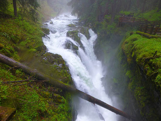Sol Duc Falls - a raging waterfall and part of the Sol Duc River